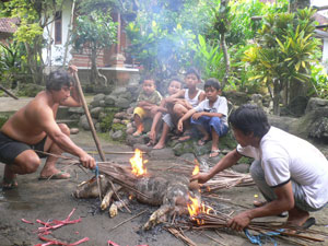 killing pig for temple ceremony at family temple for sudra caste or low caste