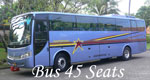 bali bus rental 45 seats